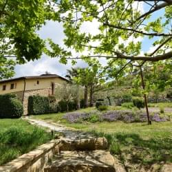 Bed And Breakfast Giucalem La Casa Negli Orti